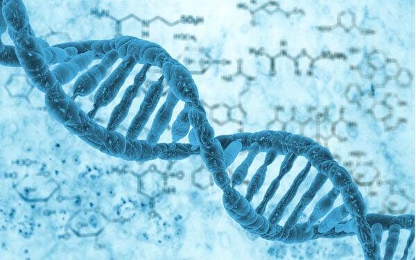 Badanie genetyczne - kto powinien je wykonać?
