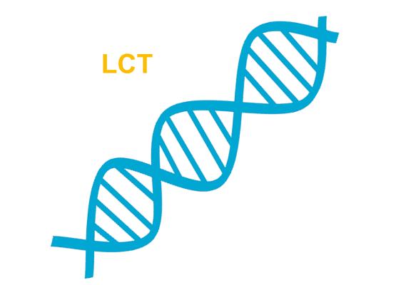 Laktoza I Jej Wlasciwosci Jakie Produkty Sa Bez Laktozy