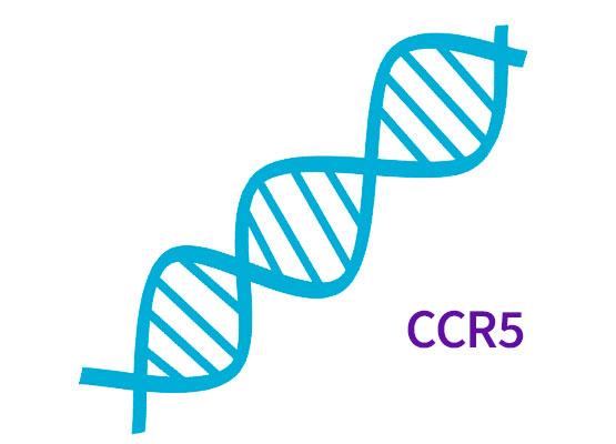Oporność na zakażenie wirusem HIV-1 - polimorfizm genu CCR5