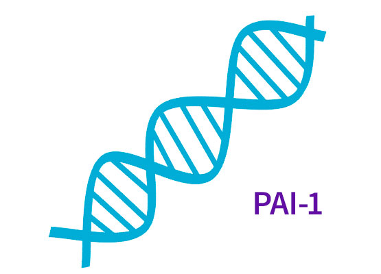 Zespół łamliwego chromosomu X - prescreening